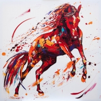 Free Spirit. SOLD. Oil on canvas 100cm x100cm £2350