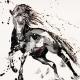 Pezzo. Unframed oil on Canvas Board. 50x60cm £1150.